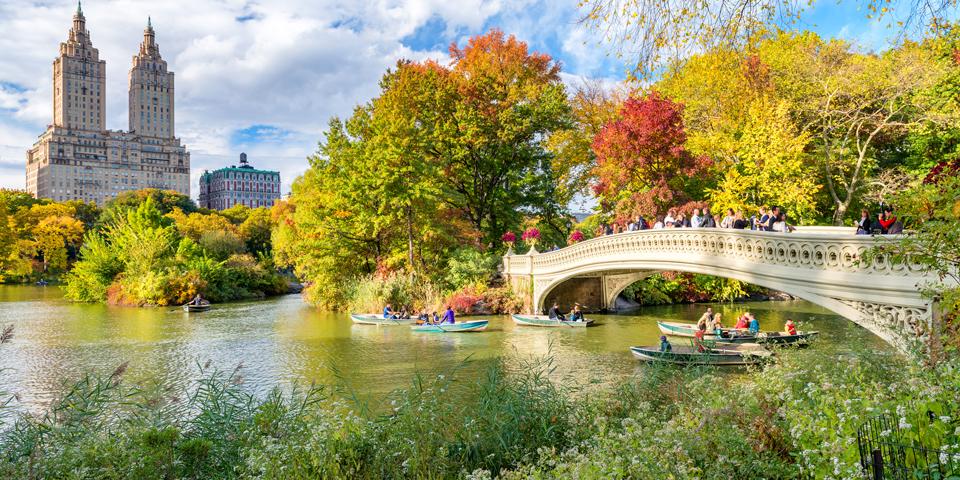 Central Park er New Yorks lunger.